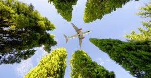 flying eco